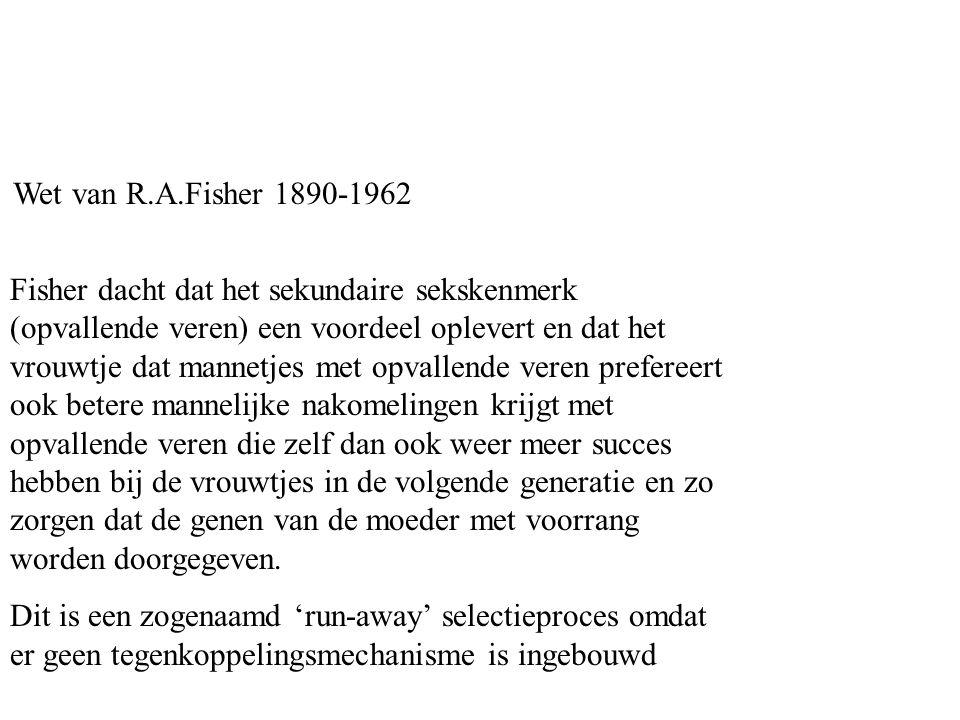 Wet van R.A.Fisher 1890-1962 Fisher dacht dat het sekundaire sekskenmerk (opvallende veren) een voordeel oplevert en dat het vrouwtje dat mannetjes me