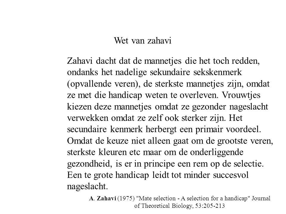 Wet van zahavi Zahavi dacht dat de mannetjes die het toch redden, ondanks het nadelige sekundaire sekskenmerk (opvallende veren), de sterkste mannetje
