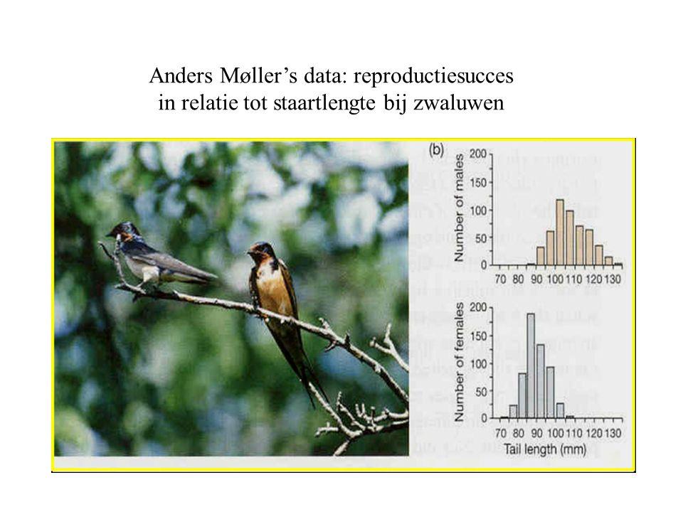 Anders Møller's data: reproductiesucces in relatie tot staartlengte bij zwaluwen