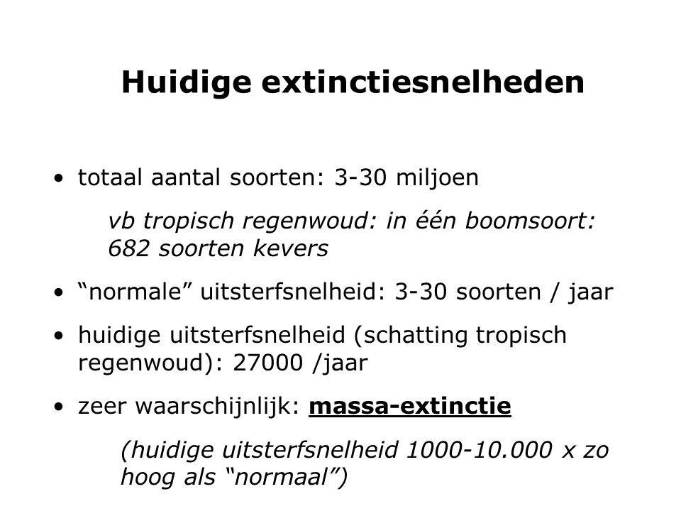 """Huidige extinctiesnelheden totaal aantal soorten: 3-30 miljoen vb tropisch regenwoud: in één boomsoort: 682 soorten kevers """"normale"""" uitsterfsnelheid:"""