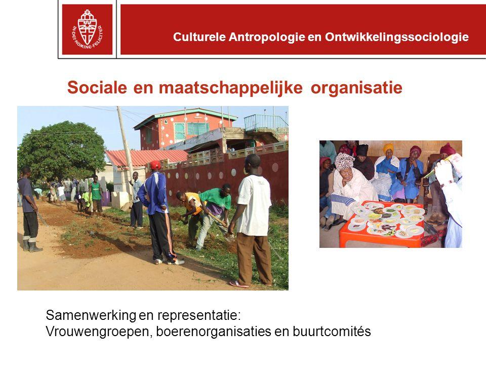 Sociale en maatschappelijke organisatie Samenwerking en representatie: Vrouwengroepen, boerenorganisaties en buurtcomités