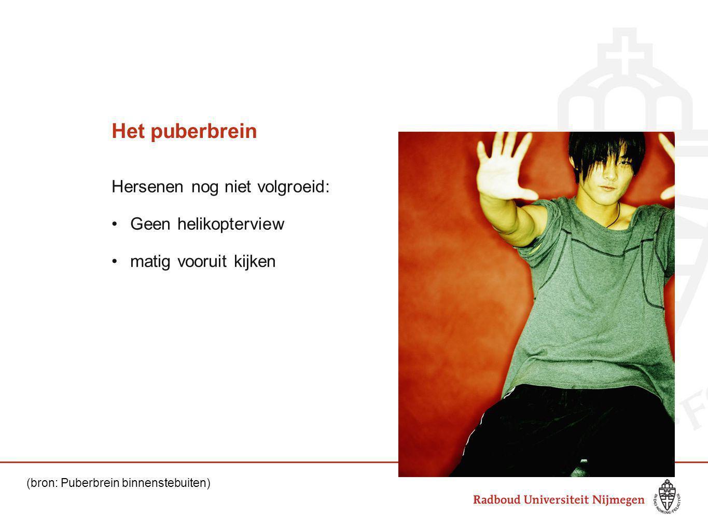 Het puberbrein Hersenen nog niet volgroeid: Geen helikopterview matig vooruit kijken (bron: Puberbrein binnenstebuiten)