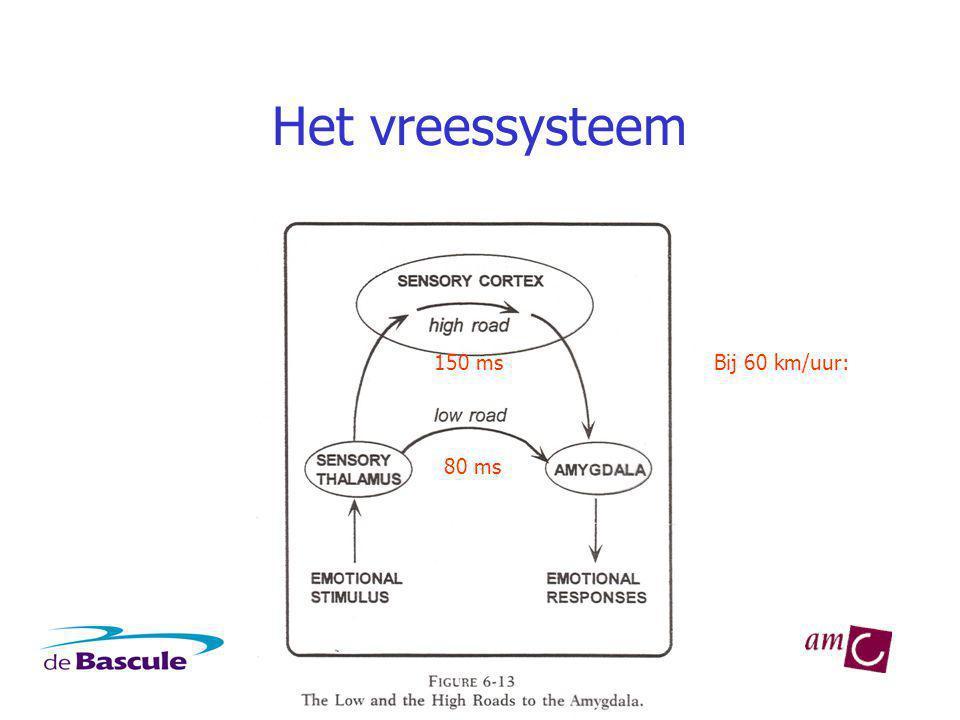 Het vreessysteem 80 ms 150 msBij 60 km/uur: