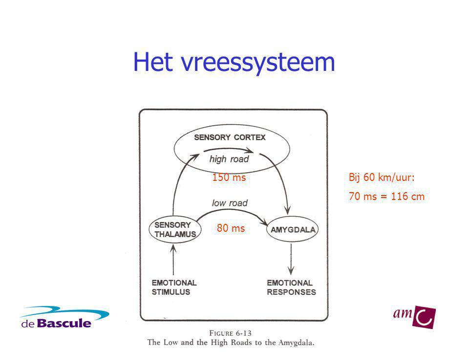 Het vreessysteem 80 ms 150 msBij 60 km/uur: 70 ms = 116 cm