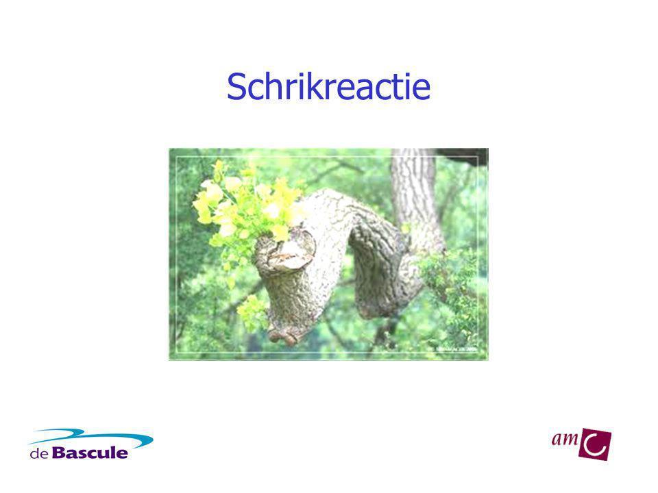 Het vreessysteem Amygdala stimuleert: Schrikreflex 'Bevriezen' Bijniermerg: adrenaline Bijnierschors: cortisol Samen: de vrees-reactie
