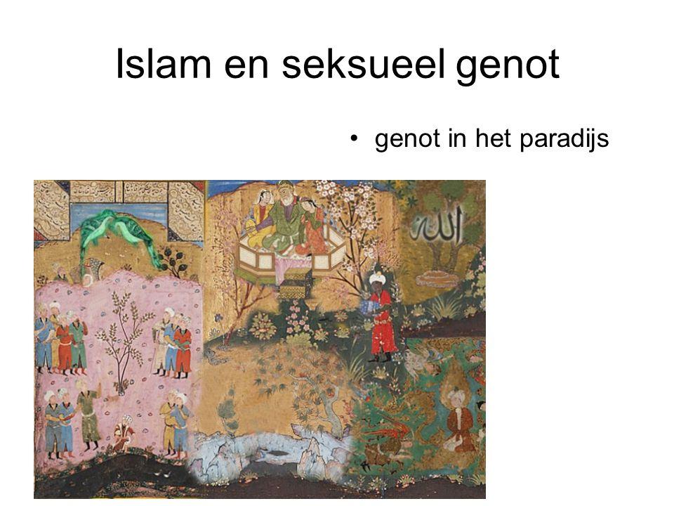 Islam en seksueel genot genot in het paradijs