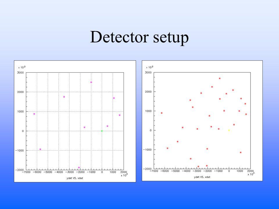 Detector setup