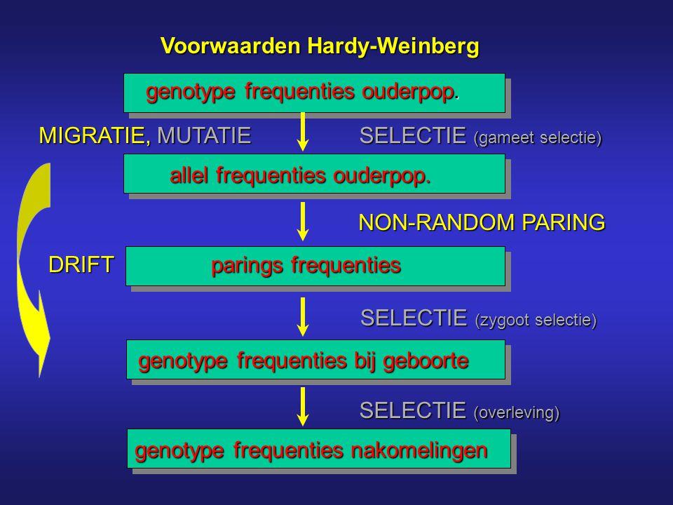 Voorwaarden Hardy-Weinberg genotype frequenties ouderpop. allel frequenties ouderpop. parings frequenties genotype frequenties bij geboorte genotype f