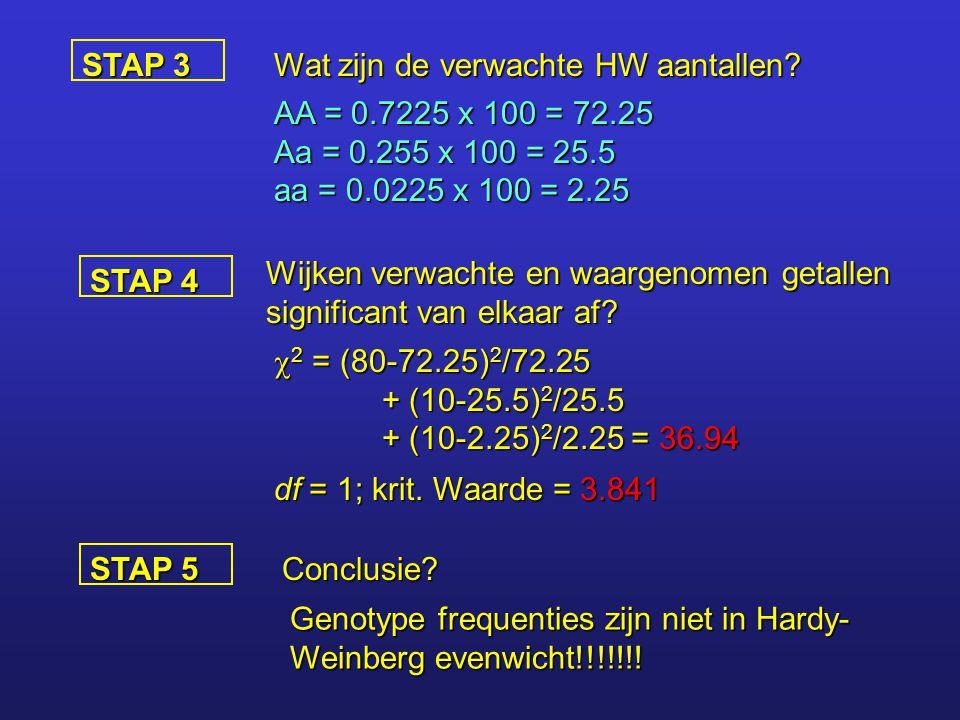 STAP 3 Wat zijn de verwachte HW aantallen? AA = 0.7225 x 100 = 72.25 Aa = 0.255 x 100 = 25.5 aa = 0.0225 x 100 = 2.25 STAP 4 Wijken verwachte en waarg