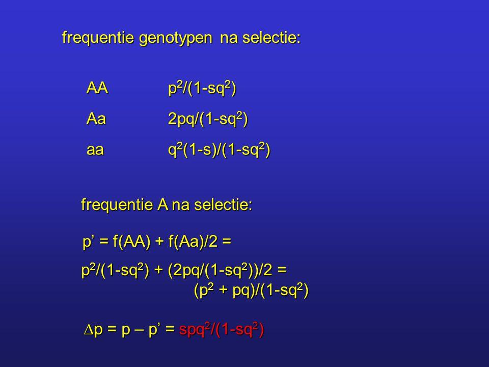 frequentie genotypen na selectie: AA p 2 /(1-sq 2 ) Aa 2pq/(1-sq 2 ) aa q 2 (1-s)/(1-sq 2 ) frequentie A na selectie: p' = f(AA) + f(Aa)/2 = p 2 /(1-s