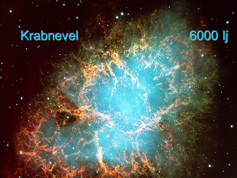 DNA Krabnevel 6000 lj