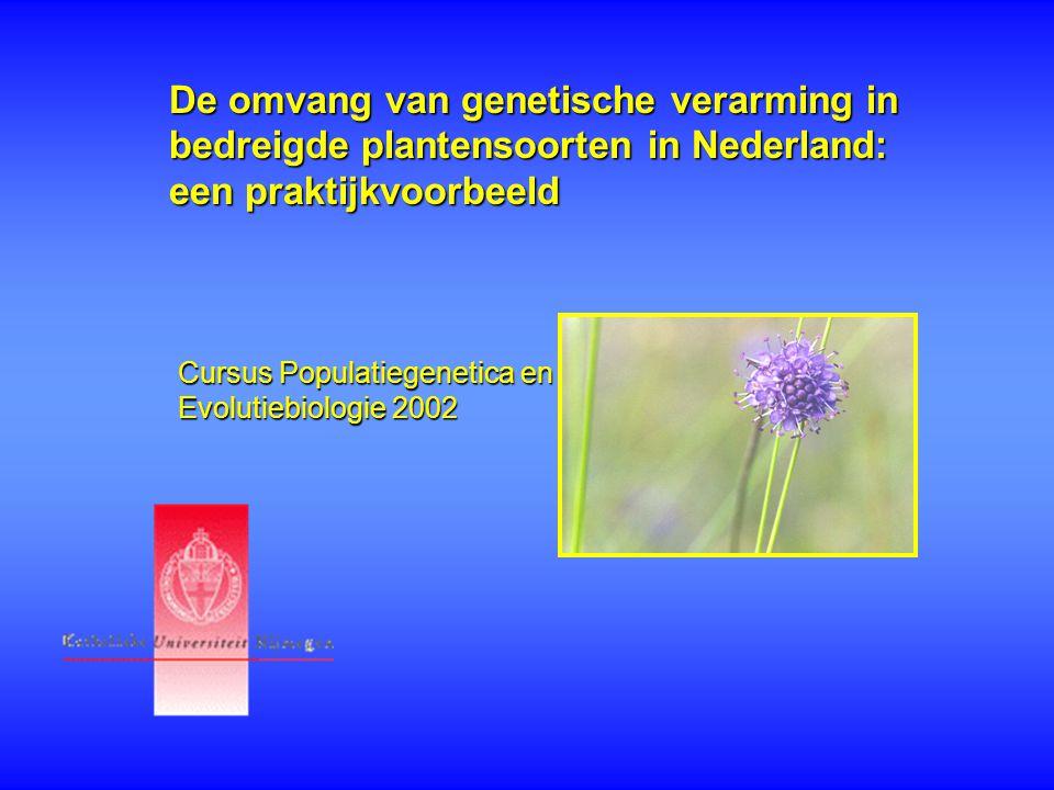 De omvang van genetische verarming in bedreigde plantensoorten in Nederland: een praktijkvoorbeeld Cursus Populatiegenetica en Evolutiebiologie 2002