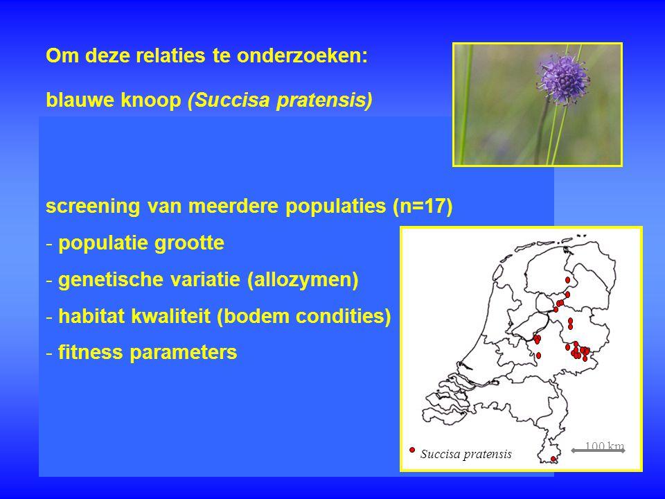 Om deze relaties te onderzoeken: screening van meerdere populaties (n=17) - - populatie grootte - - genetische variatie (allozymen) - - habitat kwalit
