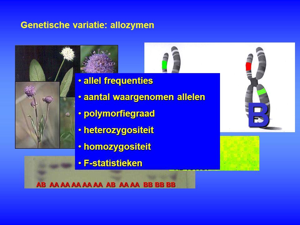 Genetische variatie: allozymen A A AB AA AA AA AA AA AB AA AA BB BB BB AAAAAB A B allel frequenties allel frequenties aantal waargenomen allelen aanta