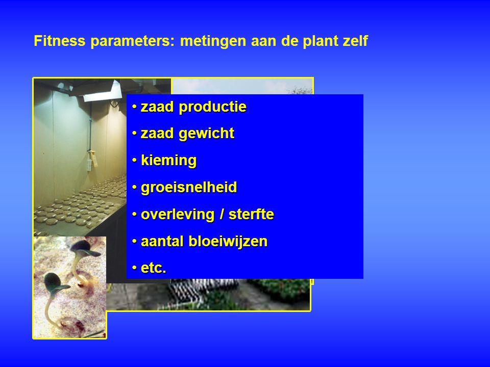 Fitness parameters: metingen aan de plant zelf zaad productie zaad productie zaad gewicht zaad gewicht kieming kieming groeisnelheid groeisnelheid ove