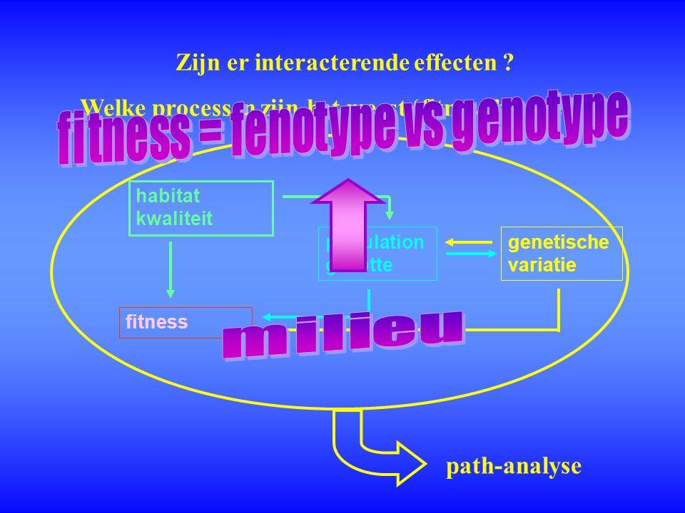 Zijn er interacterende effecten ? path-analyse population grootte habitat kwaliteit genetische variatie fitness Welke processen zijn het meest 'fitnes
