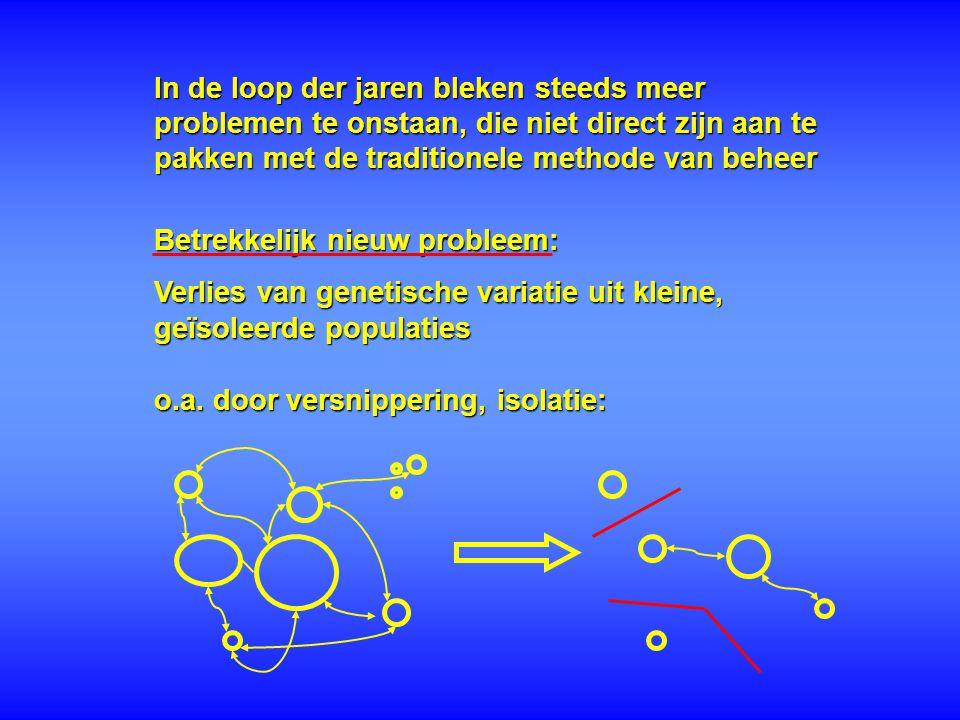 AA  AB (1 nakomeling) kans op AA kans op AB bij een AA nakomeling, verwijdering van het allel B uit de populatie verlaagde genetische variatie: genetische erosie * hoe kleiner de populatie, hoe hoger de drift:  het=1/(2N e ) * fluctuaties van allelfrequenties * kan leiden tot fixatie van allelen: homozygotie Genetische drift: Kleine, geïsoleerde populaties: -genetische verarming door random (toevallige) genetische processen: genetische drift