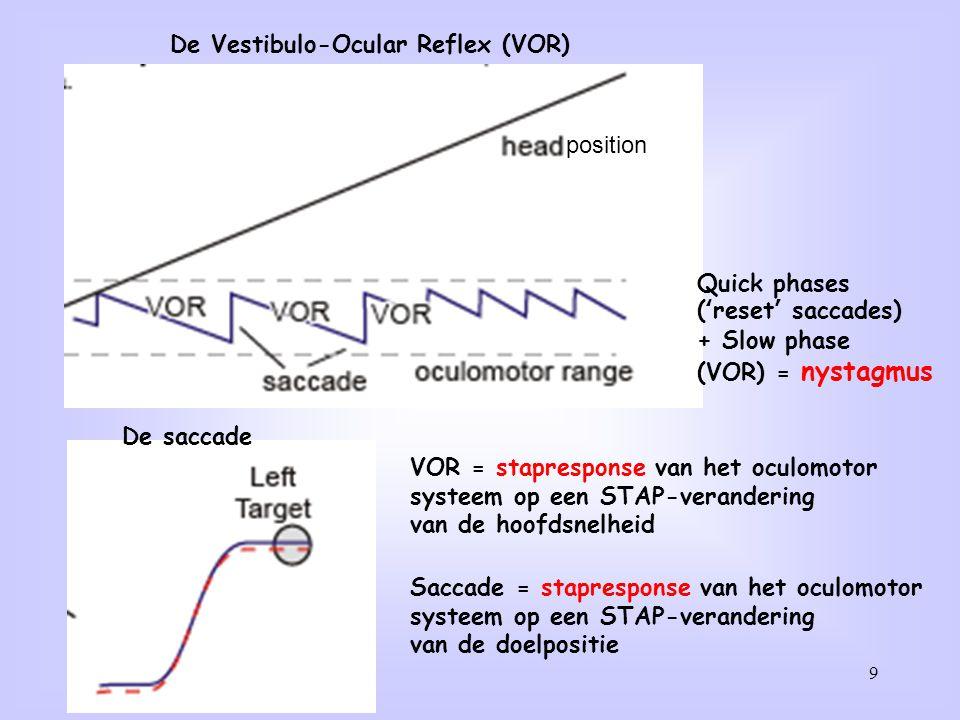 9 De Vestibulo-Ocular Reflex (VOR) position De saccade VOR = stapresponse van het oculomotor systeem op een STAP-verandering van de hoofdsnelheid Sacc