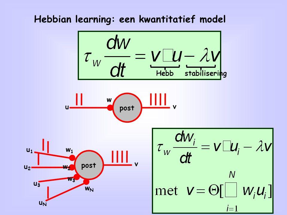 22 Hebbian learning: een kwantitatief model post u w v Hebbstabilisering post w1w1 v u1u1 w2w2 w3w3 wNwN u2u2 u3u3 uNuN