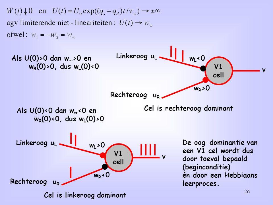 26 Als U(0)>0 dan w ∞ >0 en w R (0)>0, dus w L (0)<0 V1 cell uLuL w L <0 v uRuR w R >0 Linkeroog Rechteroog Cel is rechteroog dominant De oog-dominant