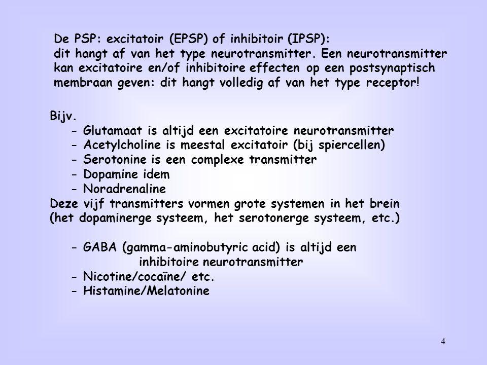 4 De PSP: excitatoir (EPSP) of inhibitoir (IPSP): dit hangt af van het type neurotransmitter. Een neurotransmitter kan excitatoire en/of inhibitoire e