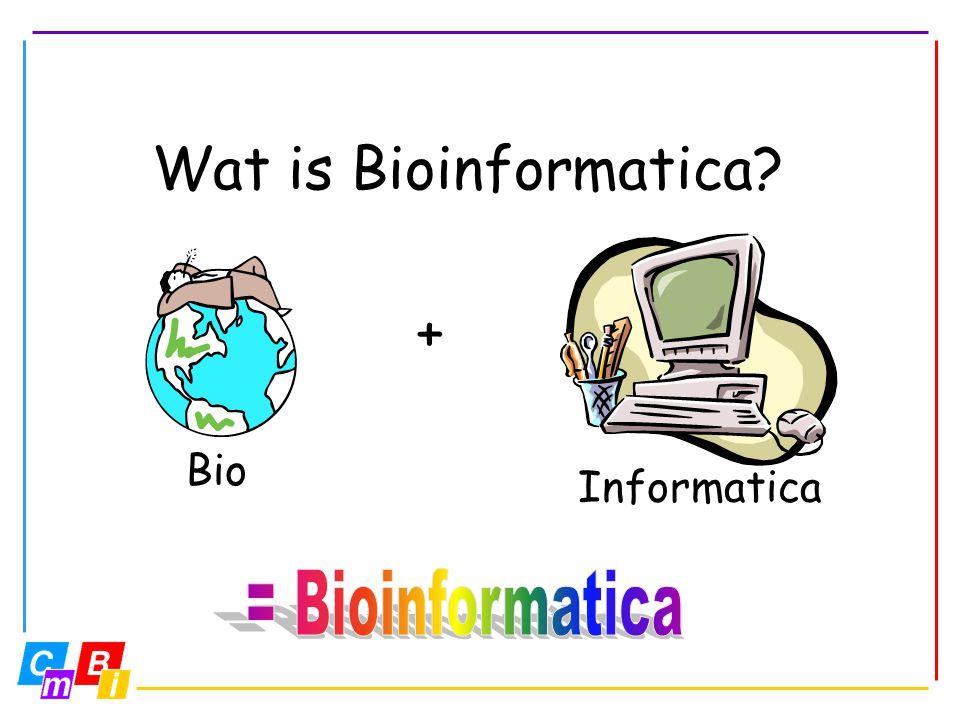 Verschillende definities Het gebruik van computers om biologische problemen op te lossen. Bioinformatica probeert eiwitten te begrijpen!
