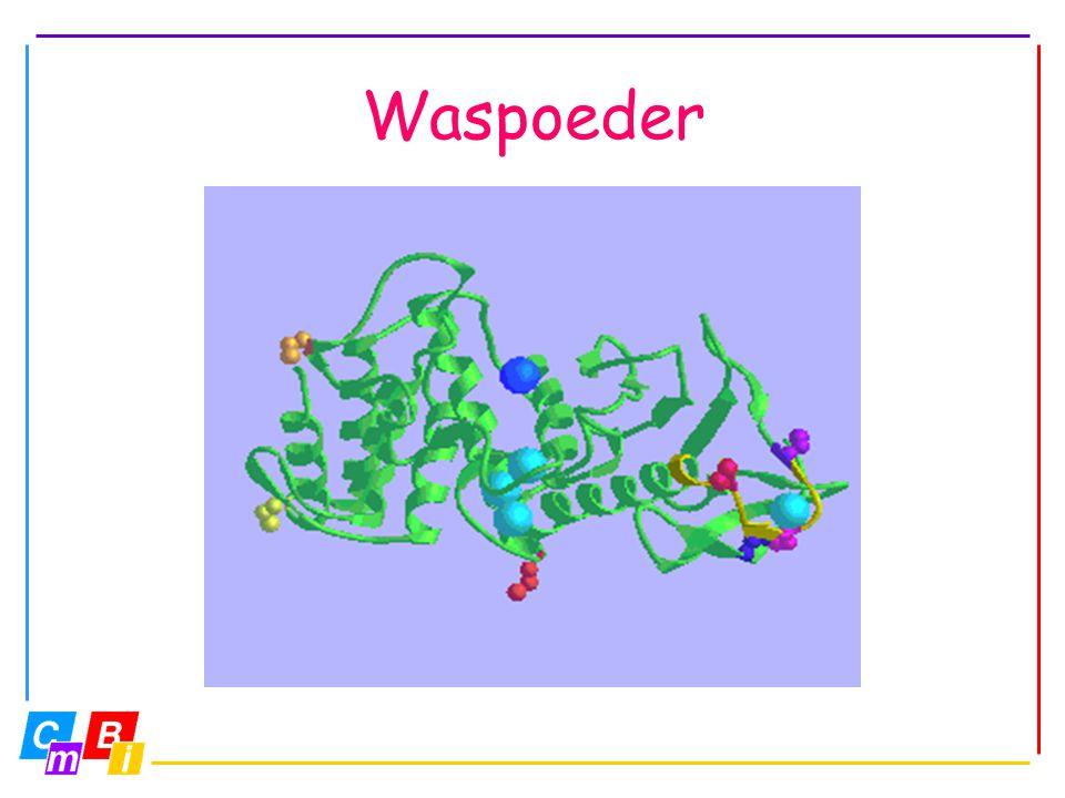 Waspoeder