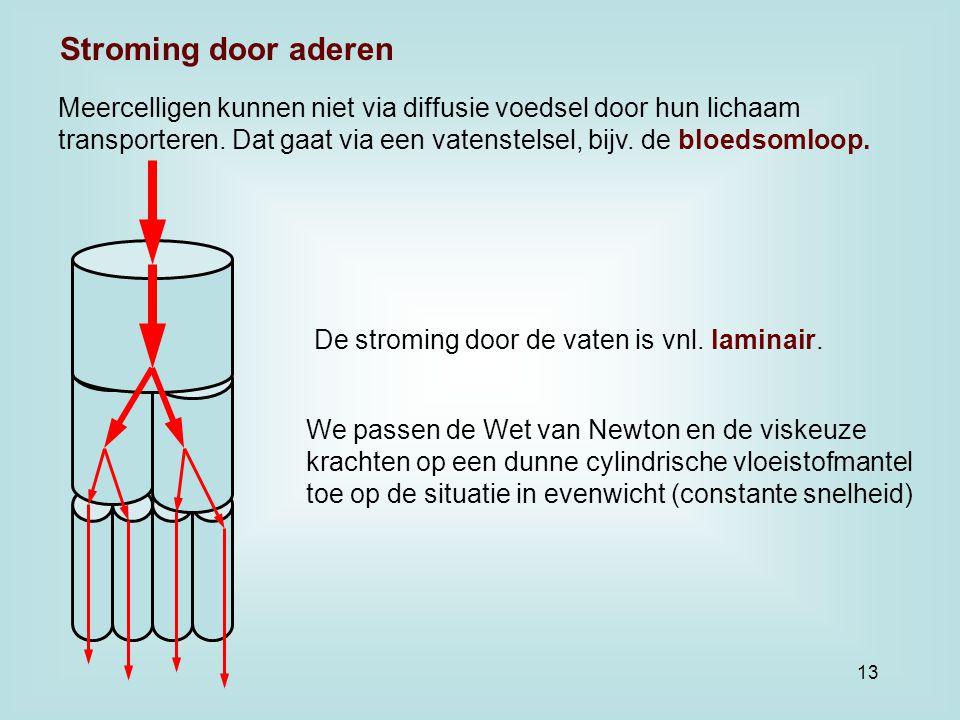 Meercelligen kunnen niet via diffusie voedsel door hun lichaam transporteren. Dat gaat via een vatenstelsel, bijv. de bloedsomloop. De stroming door d