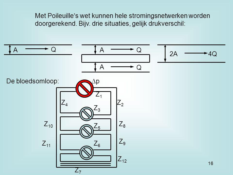 Met Poileuille's wet kunnen hele stromingsnetwerken worden doorgerekend. Bijv. drie situaties, gelijk drukverschil: A Q A A 2A Q Q 4Q De bloedsomloop: