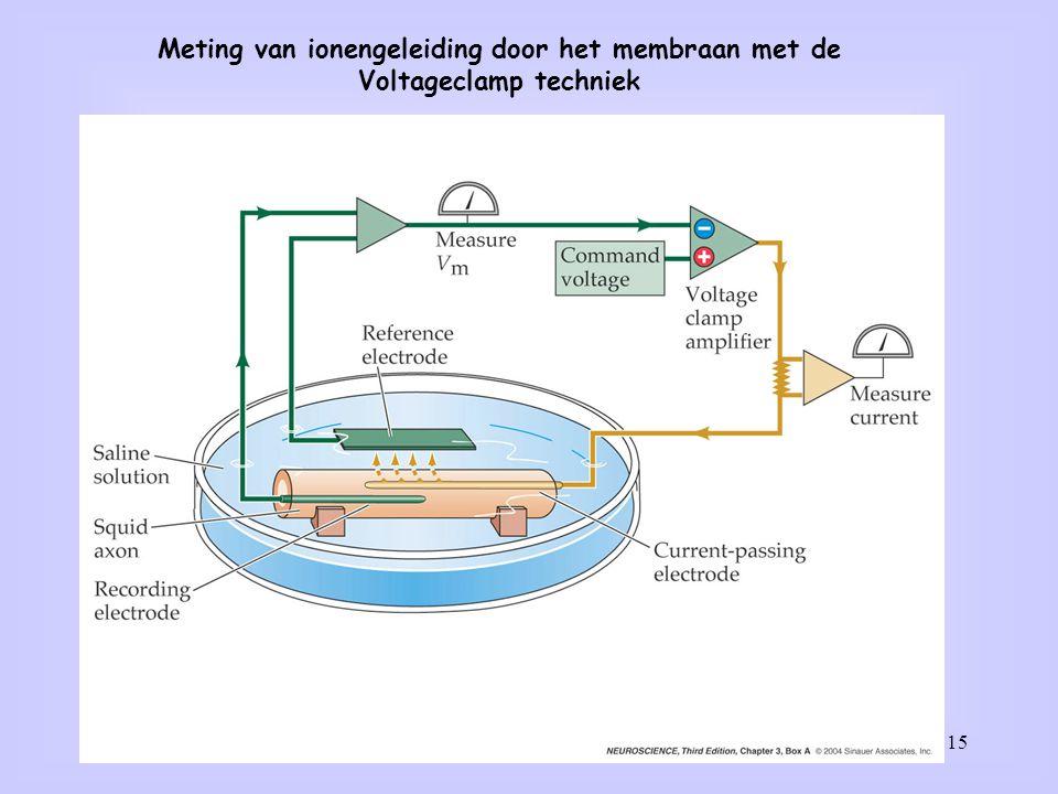 15 Meting van ionengeleiding door het membraan met de Voltageclamp techniek