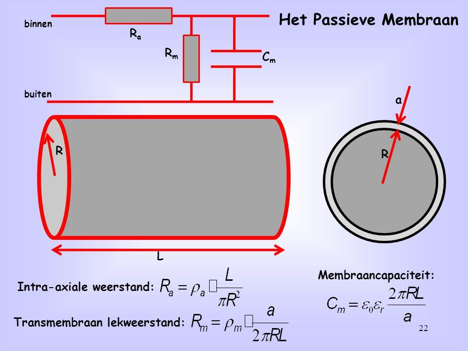 22 L R R a Intra-axiale weerstand: Transmembraan lekweerstand: Membraancapaciteit: Het Passieve Membraan CmCm RmRm RaRa binnen buiten