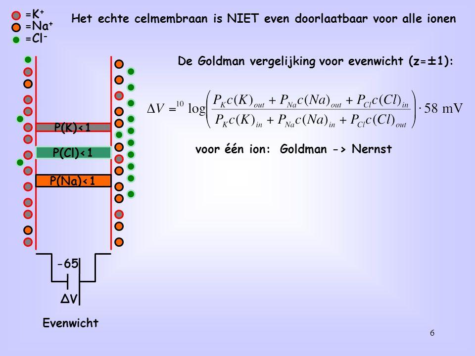 6 =K + =Na + =Cl - ∆V P(K)<1 P(Na)<1 Evenwicht -65 P(Cl)<1 De Goldman vergelijking voor evenwicht (z=±1): Het echte celmembraan is NIET even doorlaatb