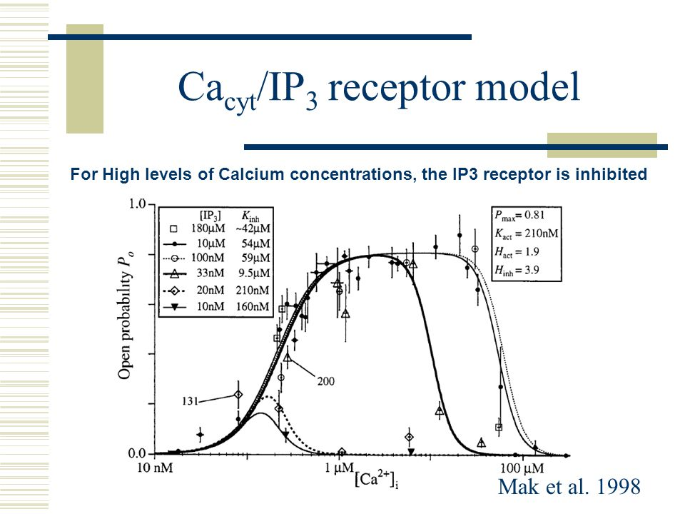 Ca cyt /IP 3 receptor model Mak et al. 1998 For High levels of Calcium concentrations, the IP3 receptor is inhibited