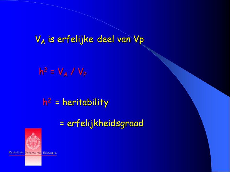 V A is erfelijke deel van Vp h 2 = V A / V P h 2 = heritability = erfelijkheidsgraad