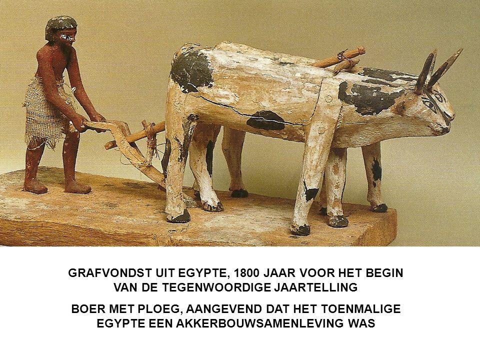 GRAFVONDST UIT EGYPTE, 1800 JAAR VOOR HET BEGIN VAN DE TEGENWOORDIGE JAARTELLING BOER MET PLOEG, AANGEVEND DAT HET TOENMALIGE EGYPTE EEN AKKERBOUWSAMENLEVING WAS