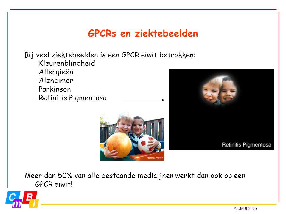 ©CMBI 2005 GPCRs en ziektebeelden Bij veel ziektebeelden is een GPCR eiwit betrokken: Kleurenblindheid Allergieën Alzheimer Parkinson Retinitis Pigmen