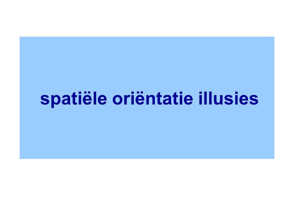 spatiële oriëntatie illusies