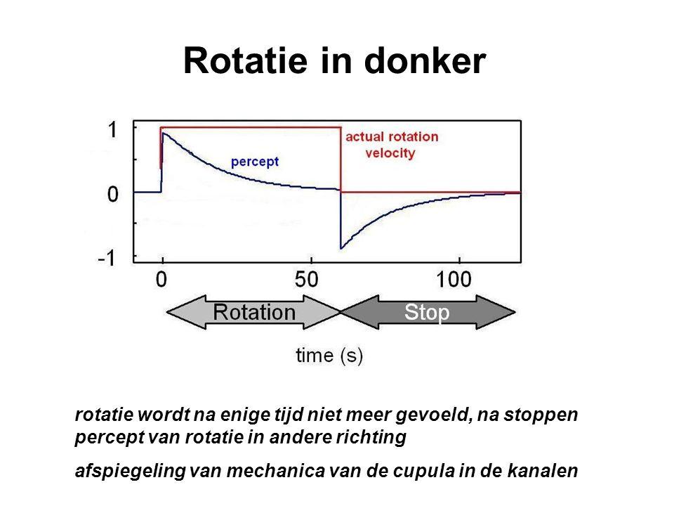 Rotatie in donker rotatie wordt na enige tijd niet meer gevoeld, na stoppen percept van rotatie in andere richting afspiegeling van mechanica van de c