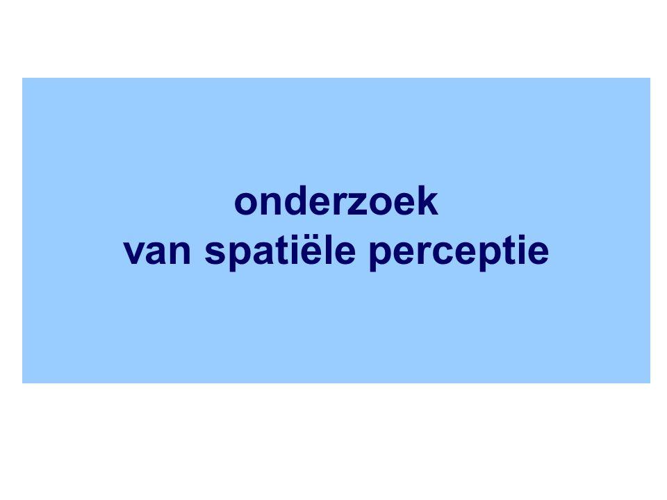 onderzoek van spatiële perceptie