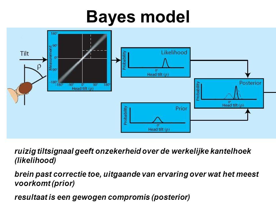 Bayes model ruizig tiltsignaal geeft onzekerheid over de werkelijke kantelhoek (likelihood) brein past correctie toe, uitgaande van ervaring over wat