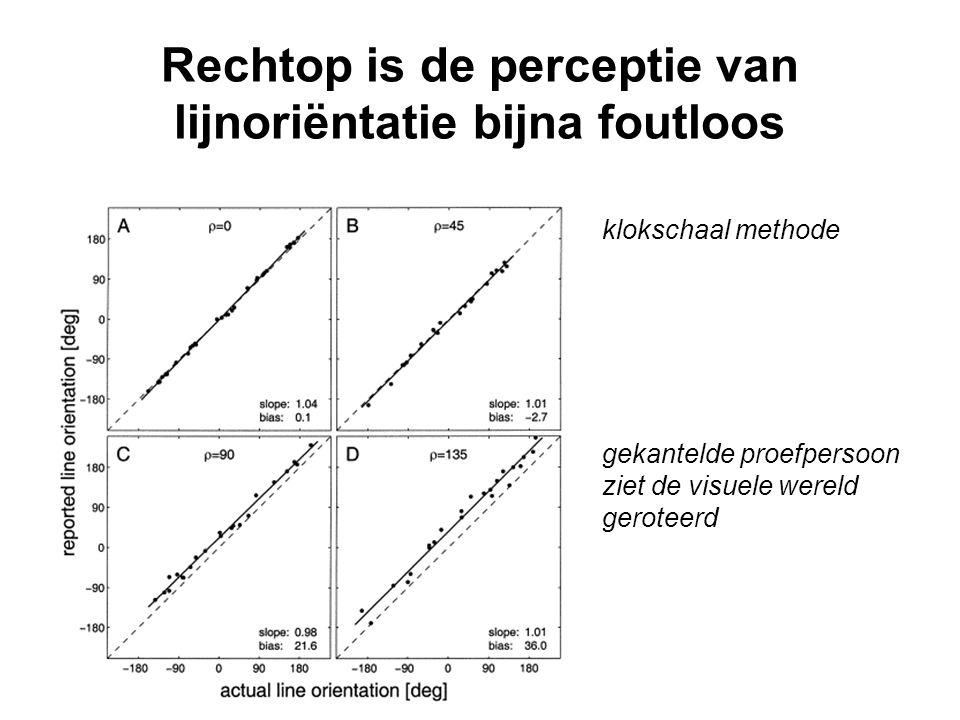 Rechtop is de perceptie van lijnoriëntatie bijna foutloos gekantelde proefpersoon ziet de visuele wereld geroteerd klokschaal methode