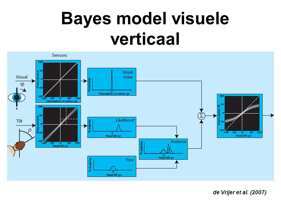 Bayes model visuele verticaal de Vrijer et al. (2007)