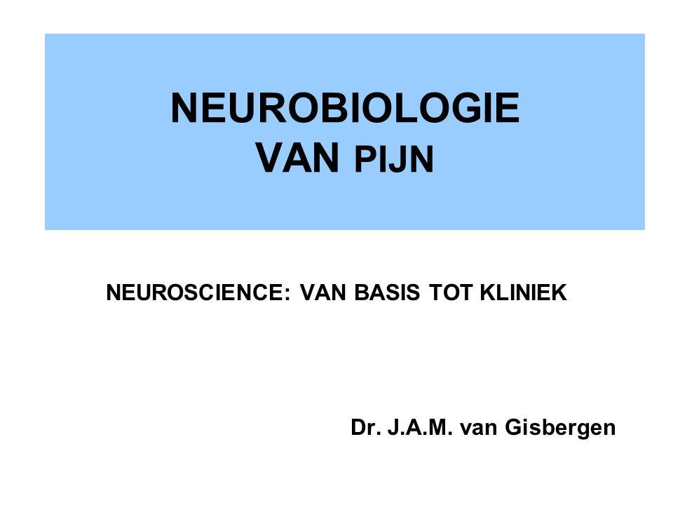 NEUROBIOLOGIE VAN PIJN NEUROSCIENCE: VAN BASIS TOT KLINIEK Dr. J.A.M. van Gisbergen