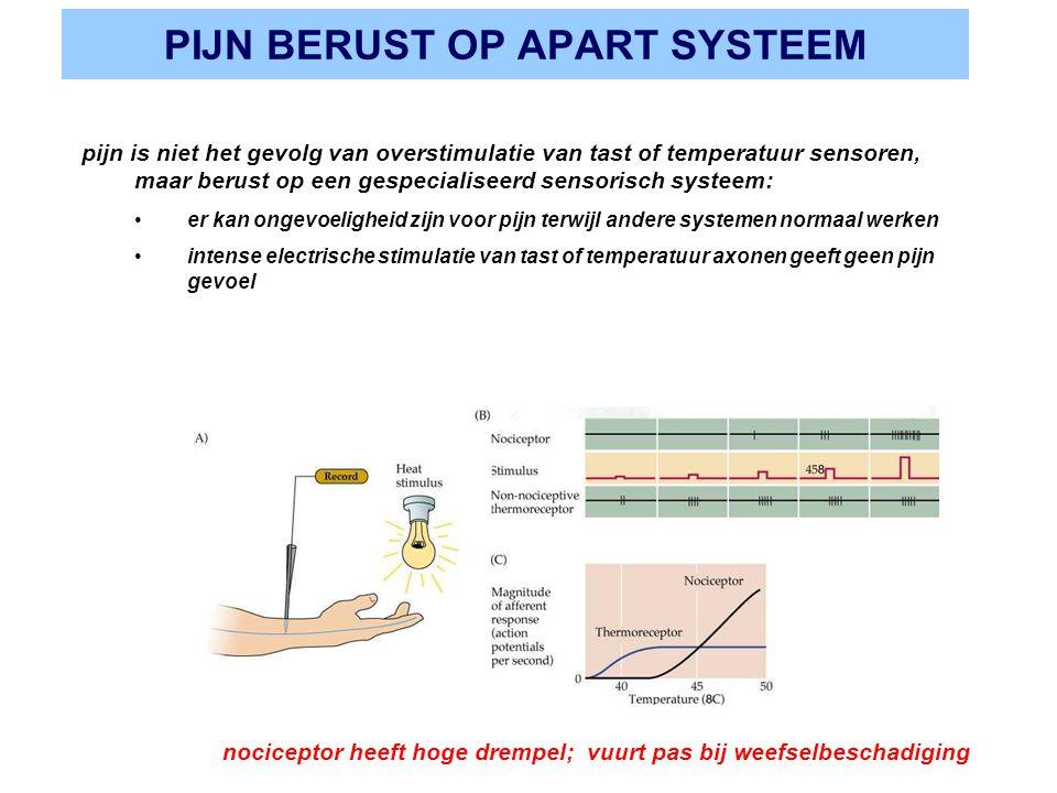 PIJN BERUST OP APART SYSTEEM pijn is niet het gevolg van overstimulatie van tast of temperatuur sensoren, maar berust op een gespecialiseerd sensorisc