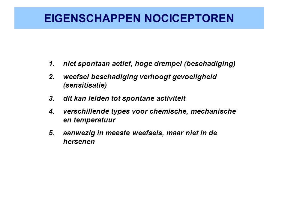 EIGENSCHAPPEN NOCICEPTOREN 1.niet spontaan actief, hoge drempel (beschadiging) 2.weefsel beschadiging verhoogt gevoeligheid (sensitisatie) 3.dit kan l