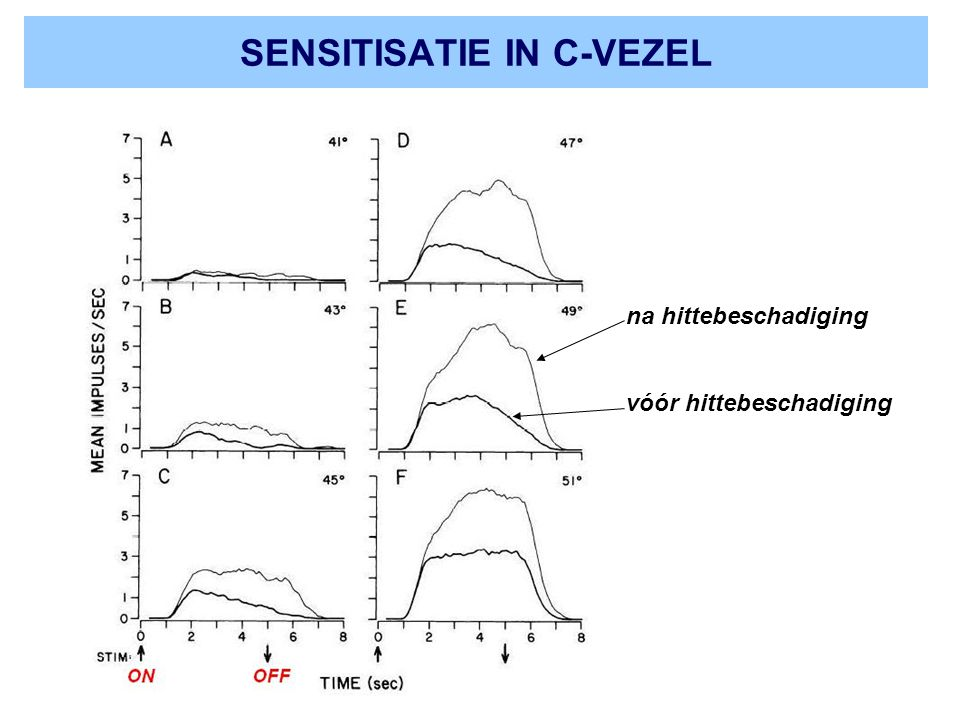 SENSITISATIE IN C-VEZEL na hittebeschadiging vóór hittebeschadiging