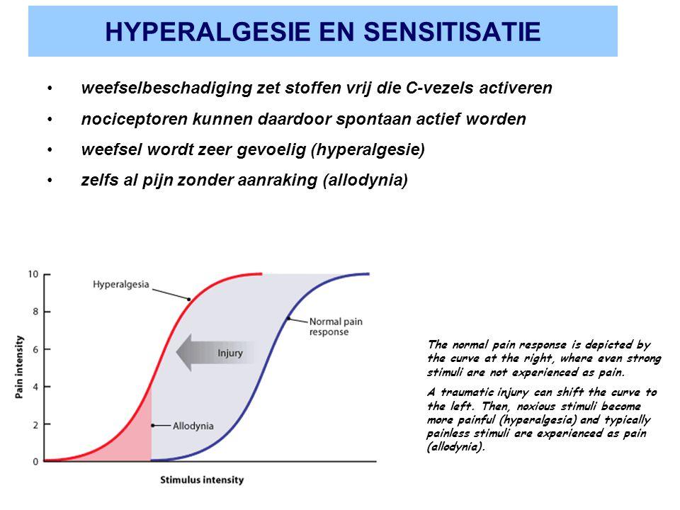 HYPERALGESIE EN SENSITISATIE weefselbeschadiging zet stoffen vrij die C-vezels activeren nociceptoren kunnen daardoor spontaan actief worden weefsel w