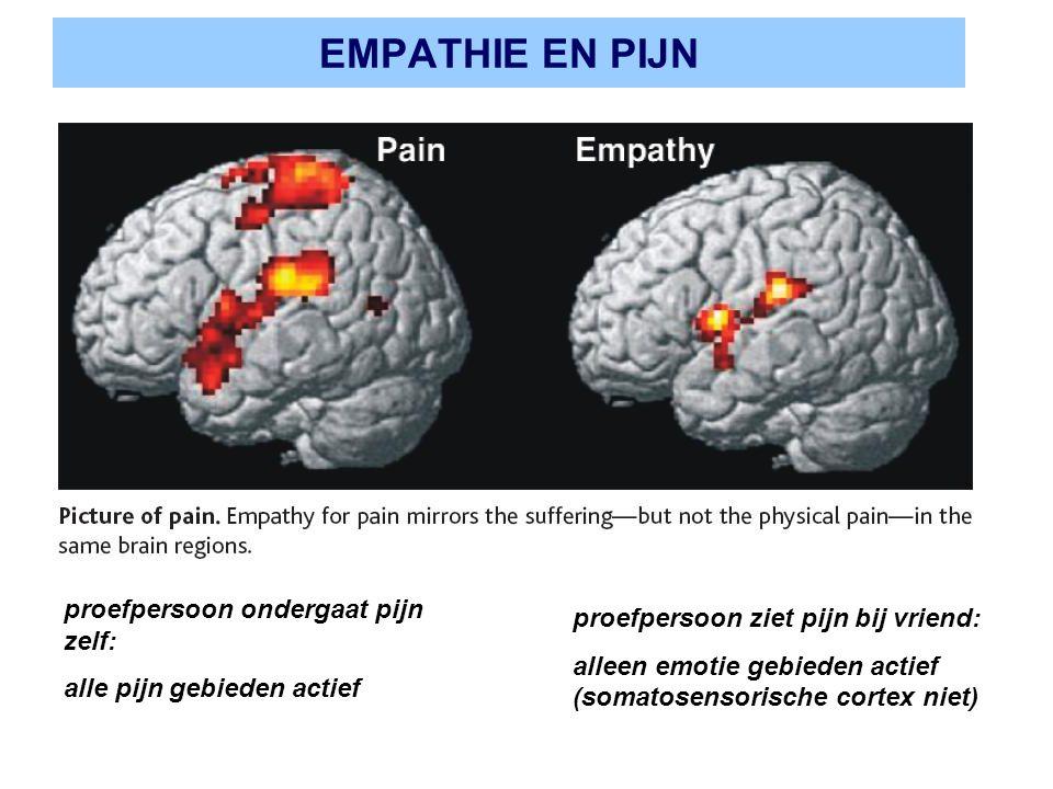 EMPATHIE EN PIJN proefpersoon ondergaat pijn zelf: alle pijn gebieden actief proefpersoon ziet pijn bij vriend: alleen emotie gebieden actief (somatos