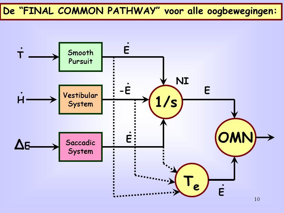 "10 Smooth Pursuit Vestibular System Saccadic System 1/s TeTe E -E E OMN T H ∆E∆E E E De ""FINAL COMMON PATHWAY"" voor alle oogbewegingen: NI"