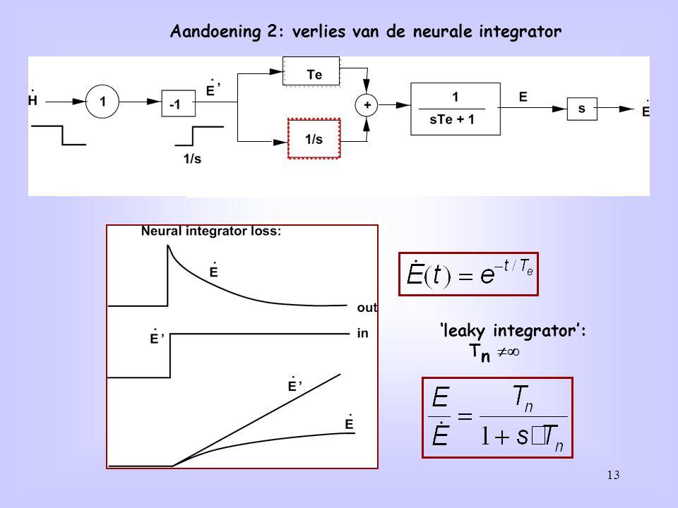 13 Aandoening 2: verlies van de neurale integrator 'leaky integrator': T n 